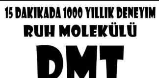 DMT Ruh Molekülü Yaşayanlar Anlattı