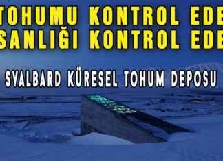 Kıyamet Projesi Svalbard Küresel Tohum Deposu