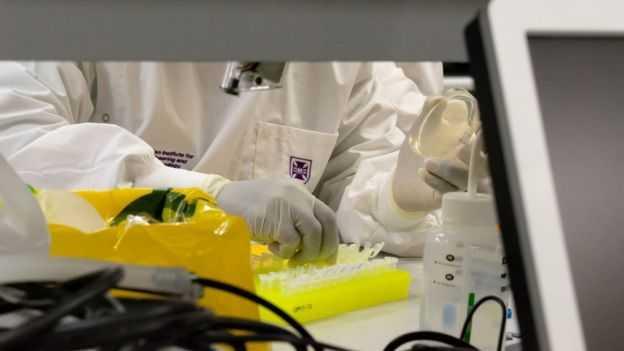 Covid-19: Koronavirüse karşı aşı geliştirme çalışmaları hangi aşamada?