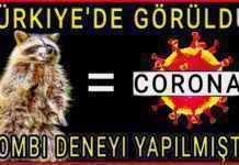 Son dakika Türkiye'de Görüldü! Virüs Kaynağı Rakun Köpeği mi? Zombi deneyi yapılmıştı! Rakunlar Türkiye'ye Virüsü mü Getirdi? Alman virolog